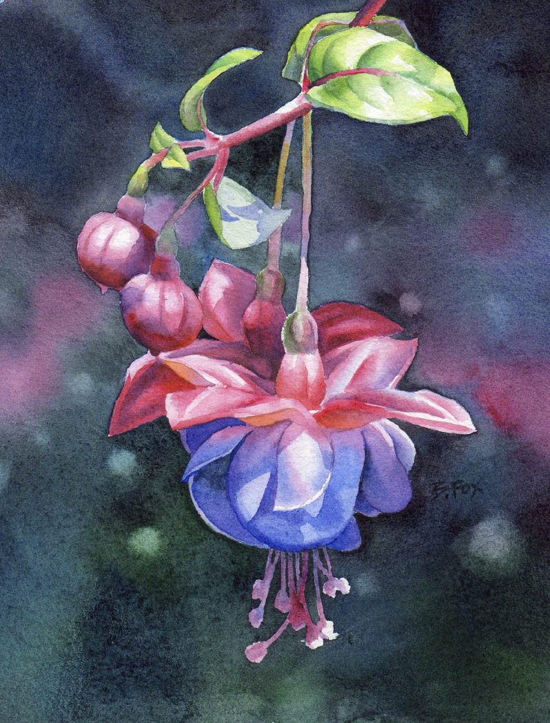 """FUCHSIA watercolor flower painting"" original fine art by Barbara Fox"