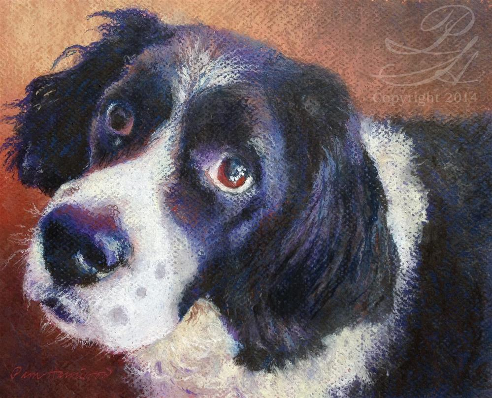 """Stella"" original fine art by Pamela Hamilton"