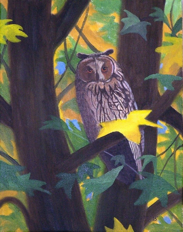 """Owl in a tree"" original fine art by John Marcum"