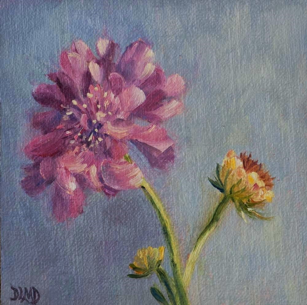 """30 in 30 Challenge, Day 17, Nature's Pincushion"" original fine art by Debbie Lamey-Macdonald"