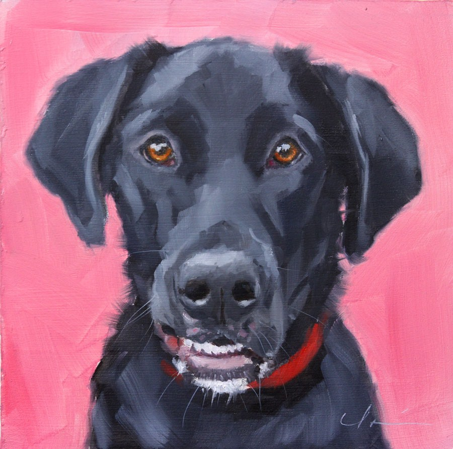 """Loki Dog"" original fine art by Clair Hartmann"