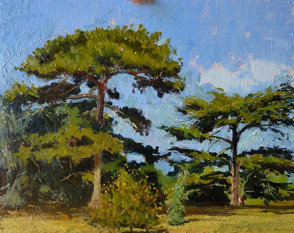 """Twin Trees, Kew Gardens"" original fine art by Adebanji Alade"