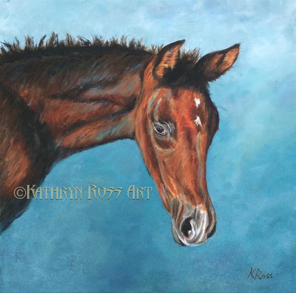 """Colt"" original fine art by Kathryn Ross"