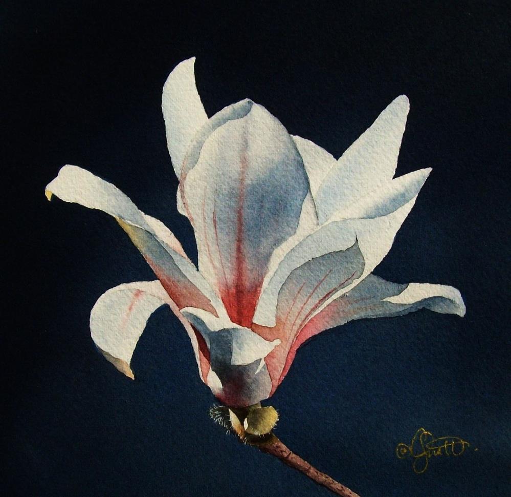 """""""Magnolia 1"""" original fine art by Jacqueline Gnott, whs"""