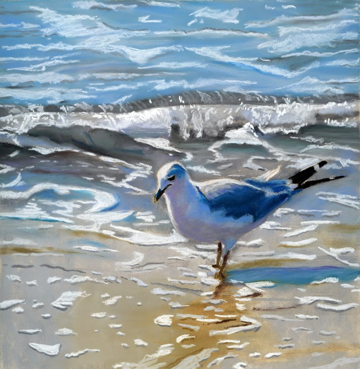 """seagull on the beach"" original fine art by Ria Hills"