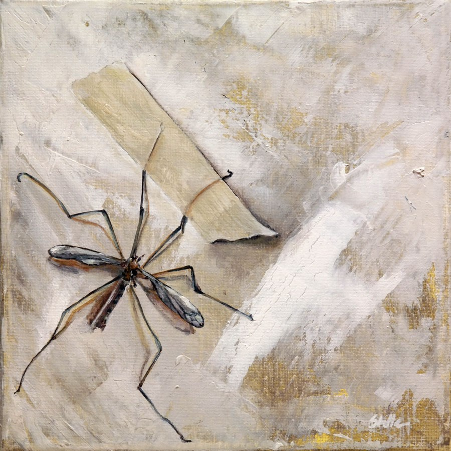 """1287 Crane Flies"" original fine art by Dietmar Stiller"