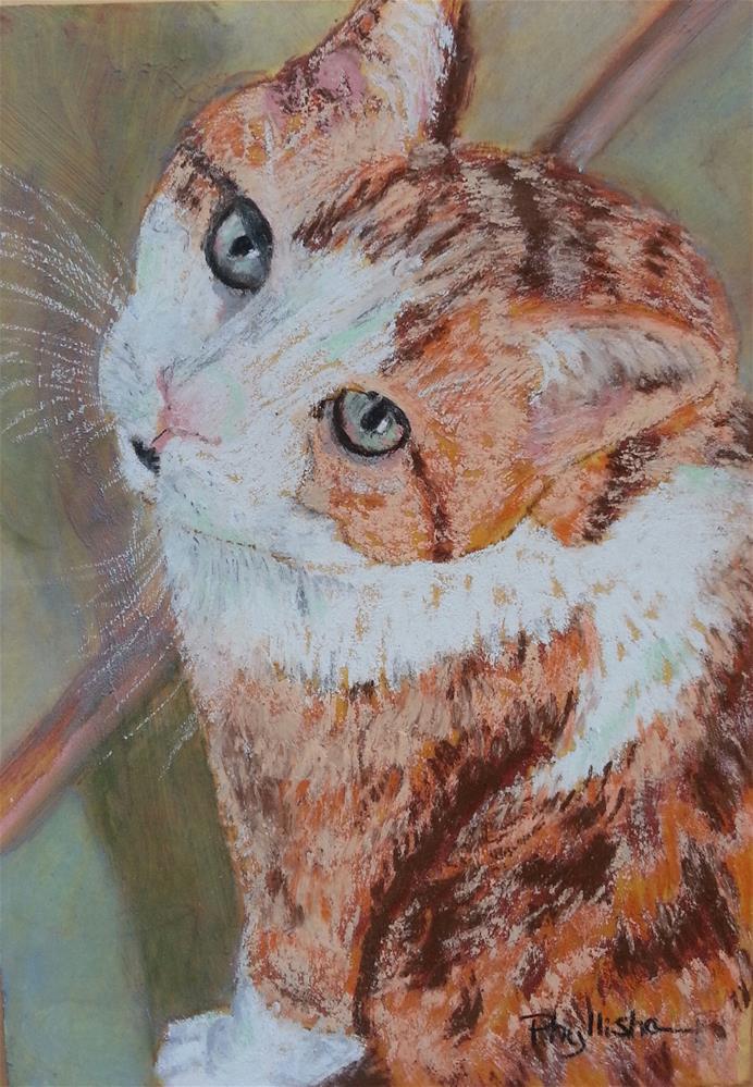 """My Cat Squash"" original fine art by Phyllisha Hamrick"