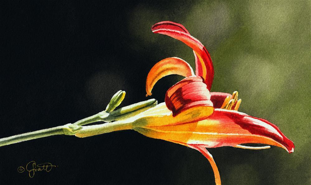 """Soaring"" original fine art by Jacqueline Gnott, TWSA, WHS"