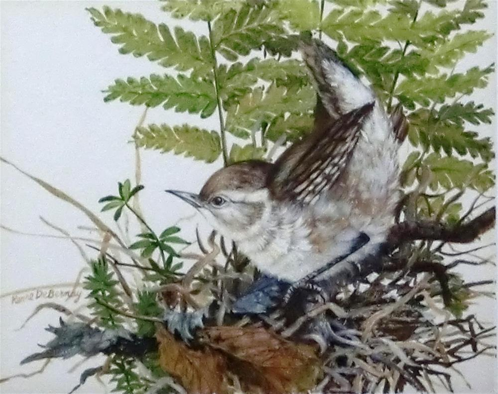 """House Wren"" original fine art by Jean Pierre DeBernay"