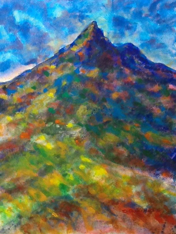 """269 MOUNT WARNING 35"" original fine art by Trevor Downes"