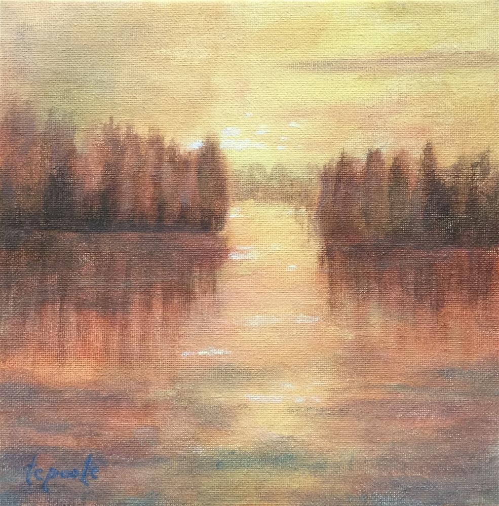 """Contemplations Light"" original fine art by T.C. Poole"