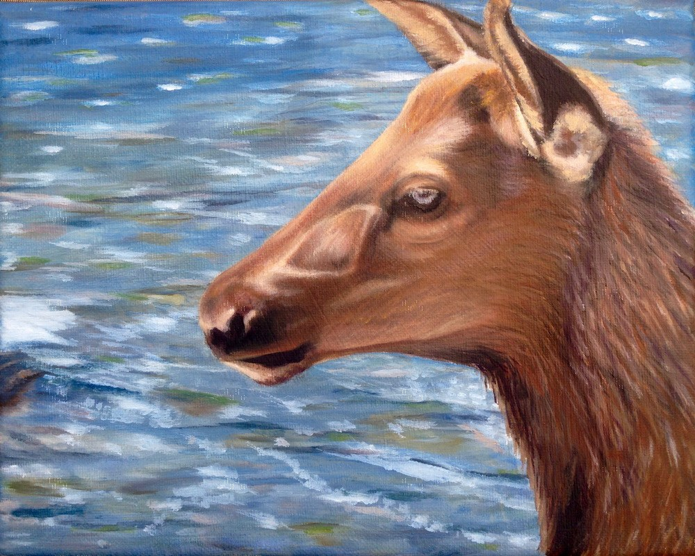 """Oh Deer"" original fine art by Karen Stitt"