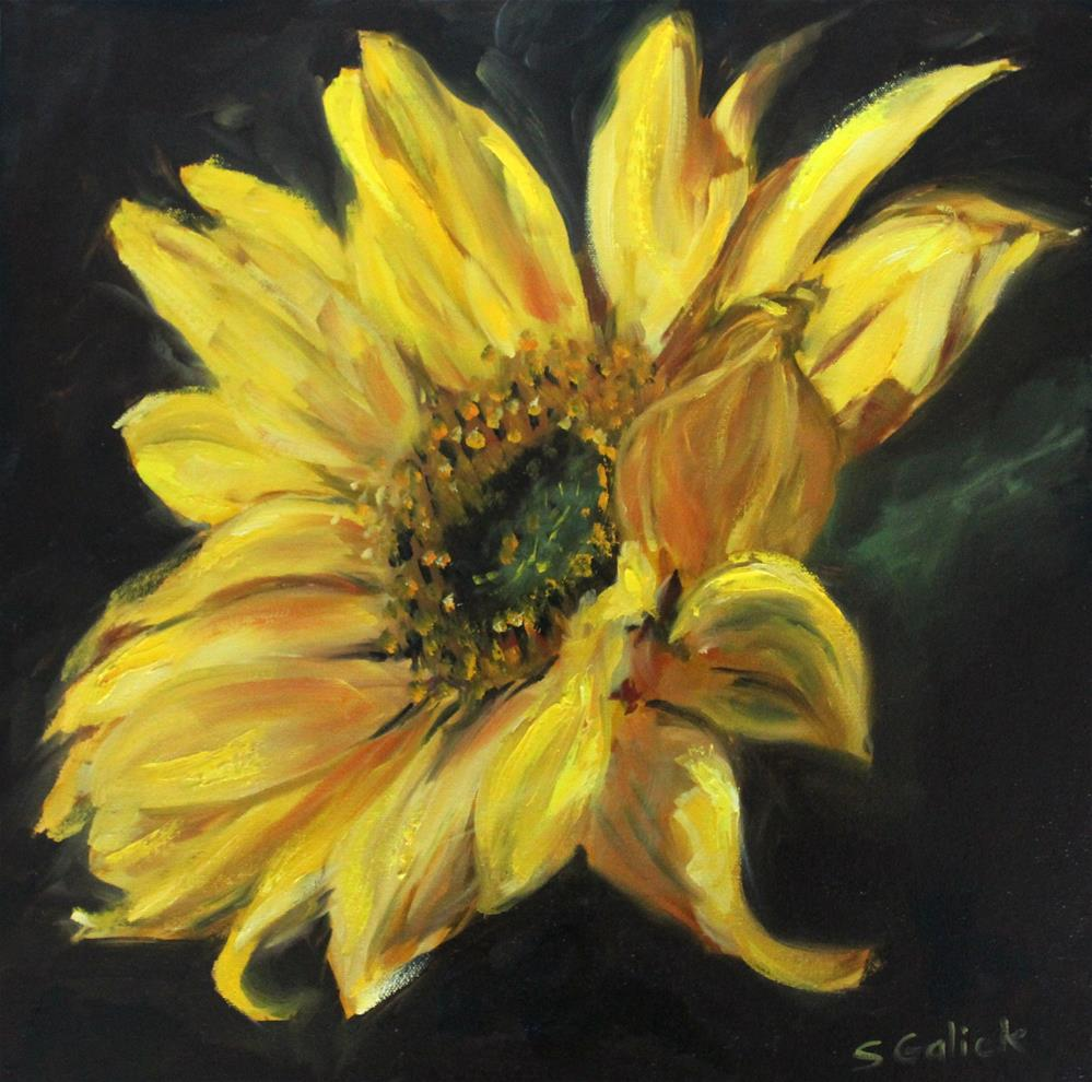 """Golden Sunshine"" original fine art by Susan Galick"