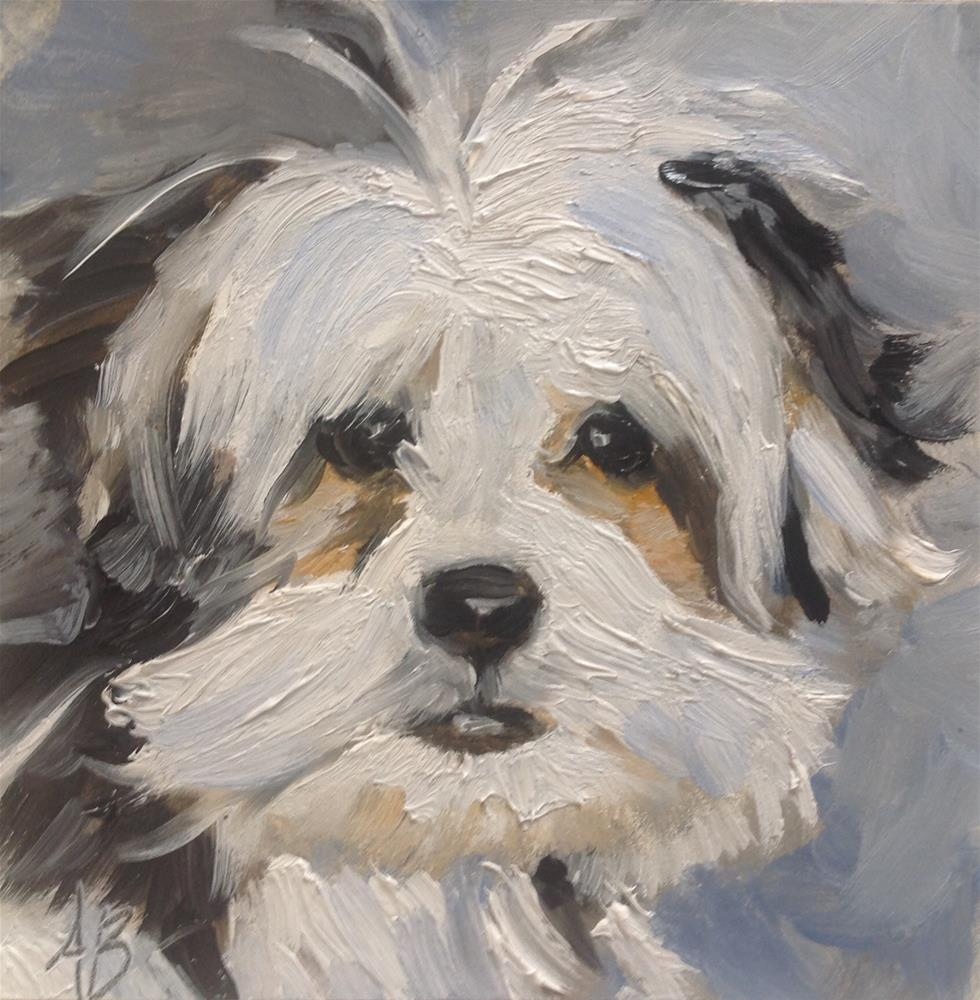 """Shaggy Dog # 2"" original fine art by Annette Balesteri"