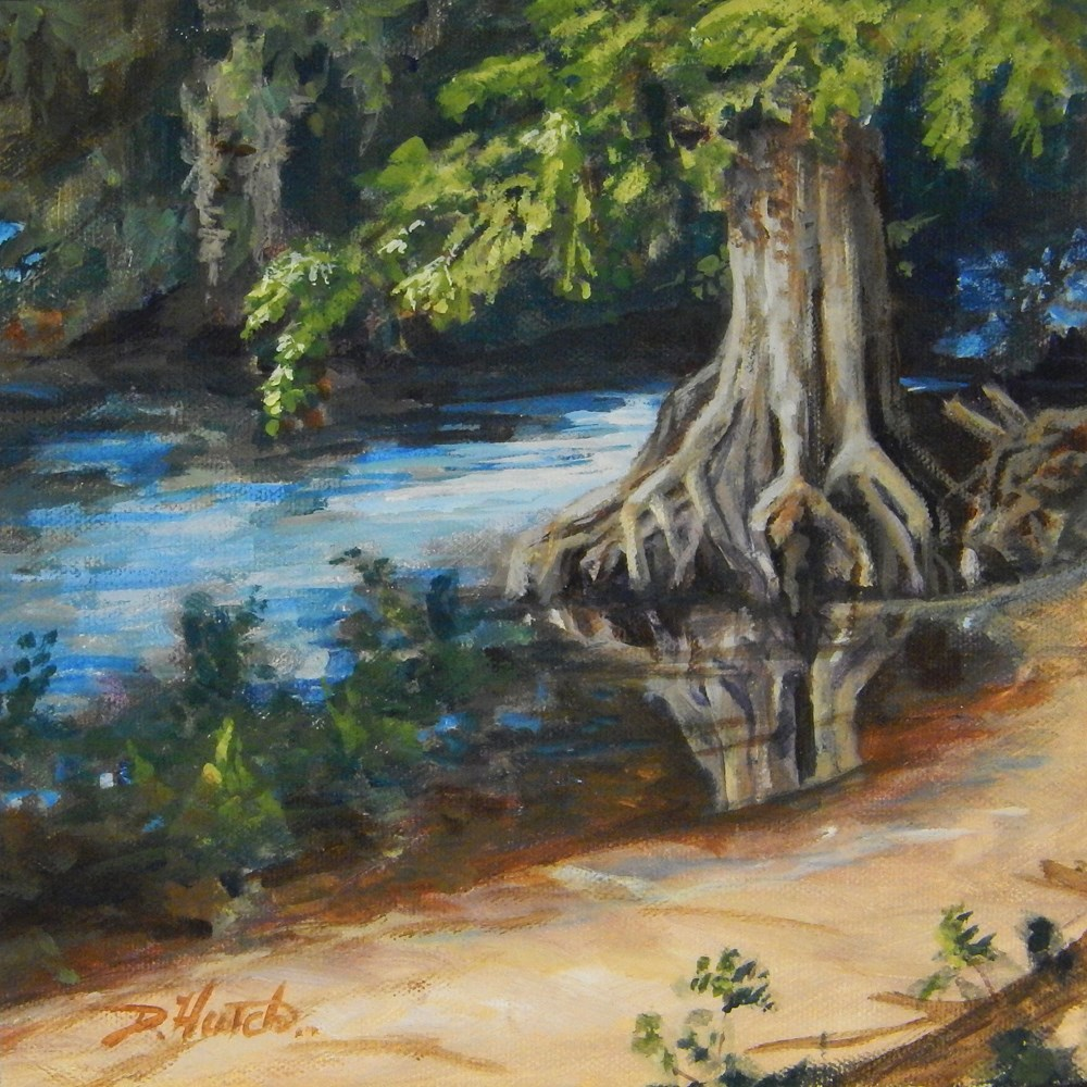 """Cypress Tree at KK's"" original fine art by Diane Hutchinson"