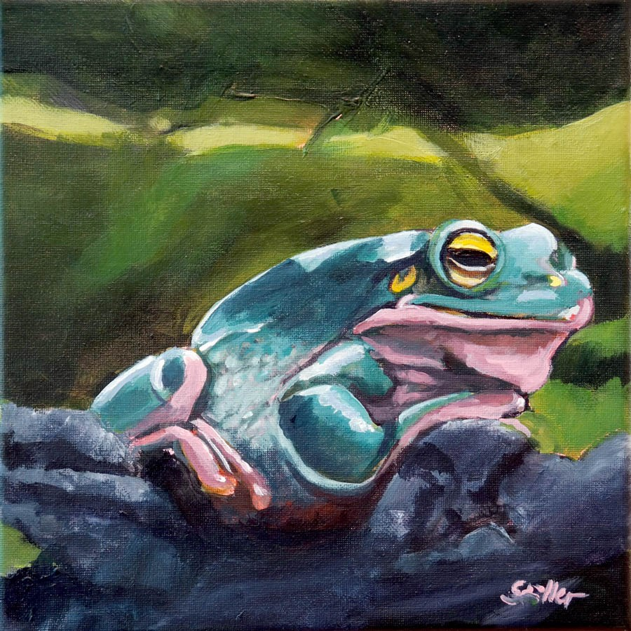 """1784 Frog Portrait"" original fine art by Dietmar Stiller"