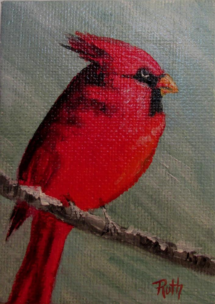 """Angry Cardinal"" original fine art by Ruth Stewart"