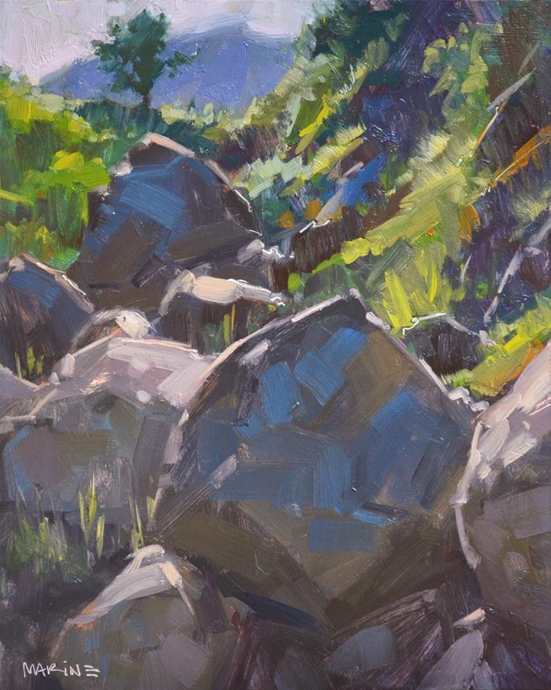 """Boulder Valley"" original fine art by Carol Marine"