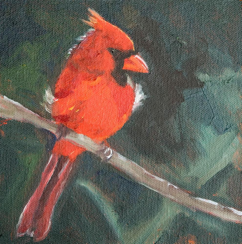 """KMD30656 Redbird by Colorado artist Kit Hevron Mahoney (6x6, Cardinal, bird, nature)"" original fine art by Kit Hevron Mahoney"