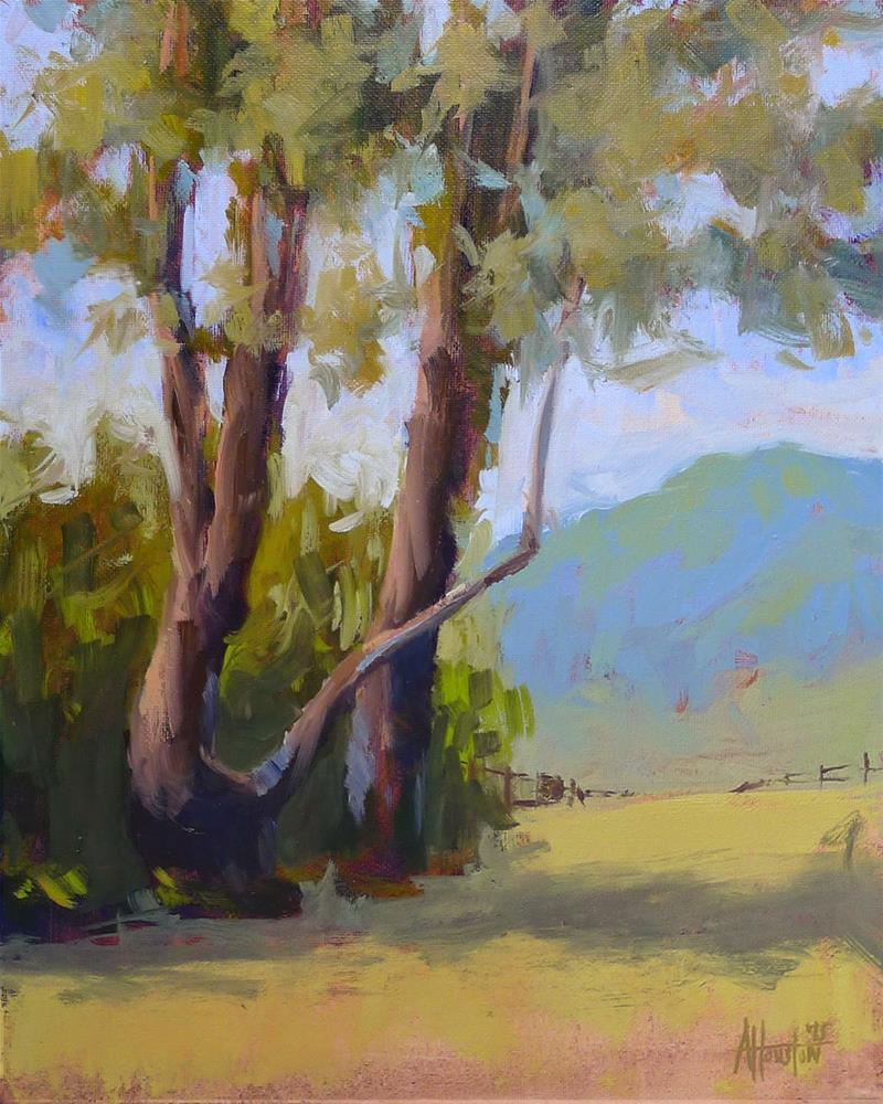 """Brasstown Valley Trees II"" original fine art by Adam Houston"