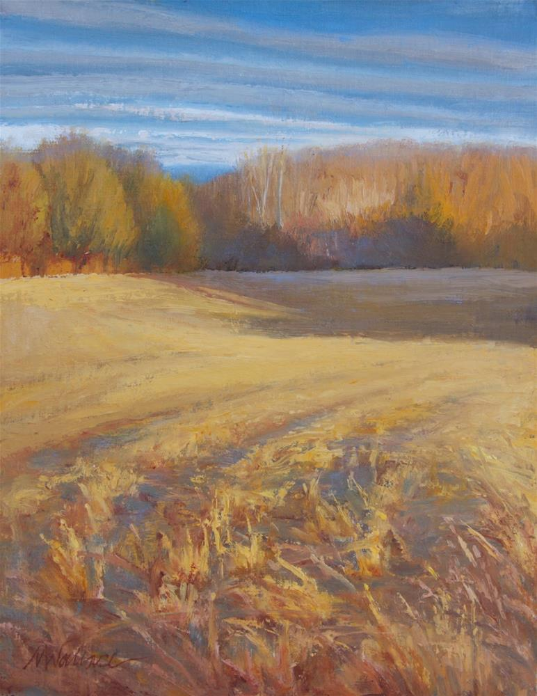 """#102 Curvy hayfield"" original fine art by Nancy Wallace"