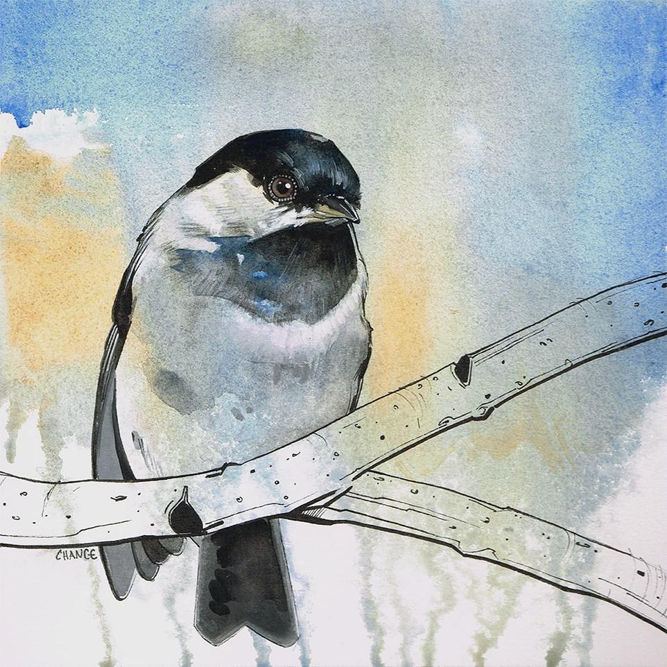 """No. 33 Chickadee"" original fine art by Annabel Chance"