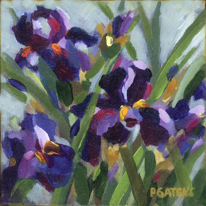 """Iris Trio"" original fine art by Pamela Gatens"