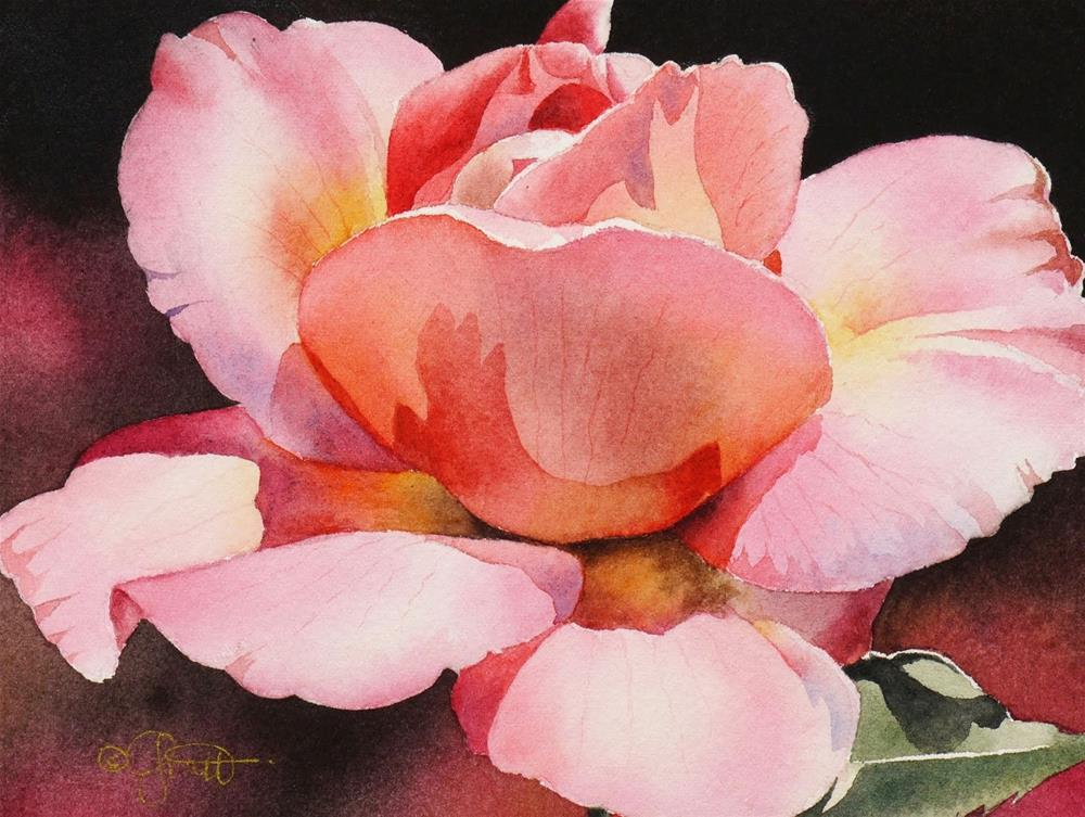 """Pink Rose, New Watercolor & New Beginner Video on the Forum"" original fine art by Jacqueline Gnott, TWSA, WHS"