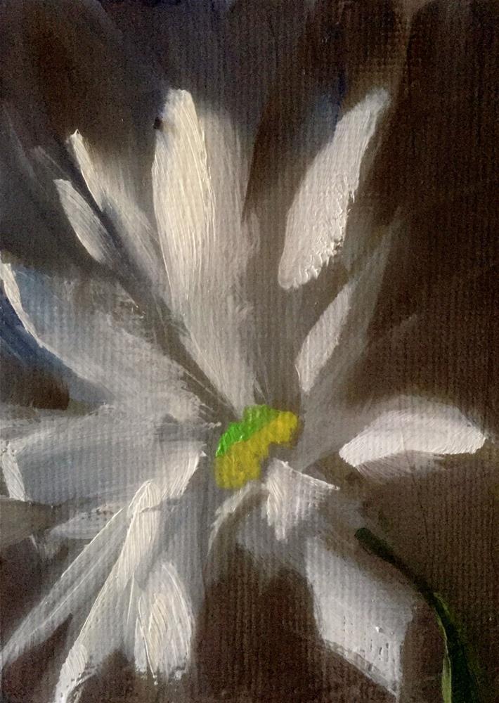 """Daisy Study III"" original fine art by Gary Bruton"