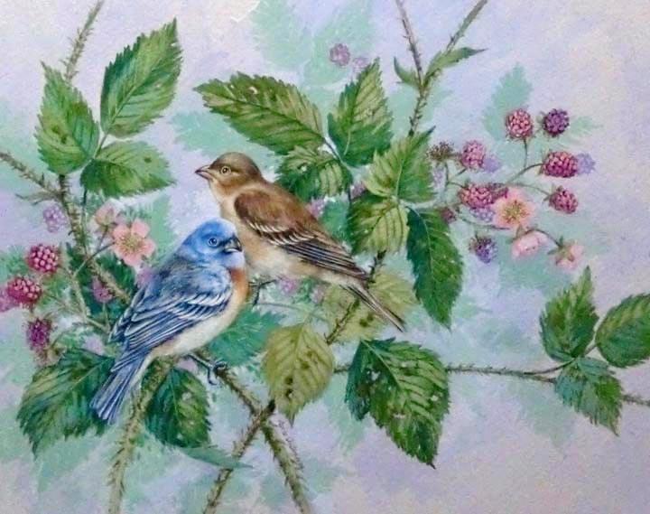 """""""Eastern Bluebirds"""" original fine art by Jean Pierre DeBernay"""