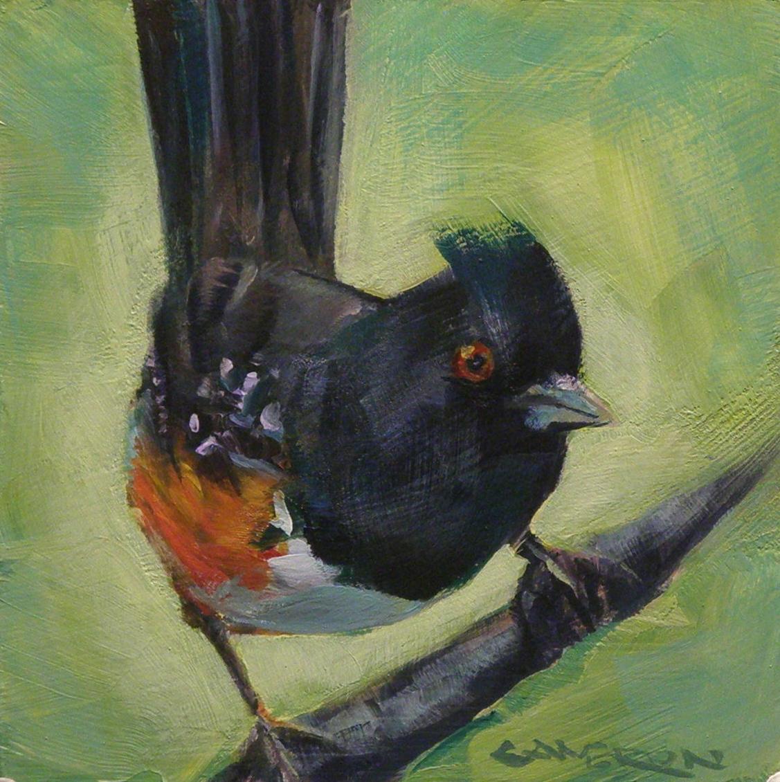 """TOWHEE"" original fine art by Brian Cameron"