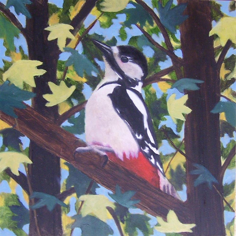 """Great Spotted Woodpecker"" original fine art by John Marcum"