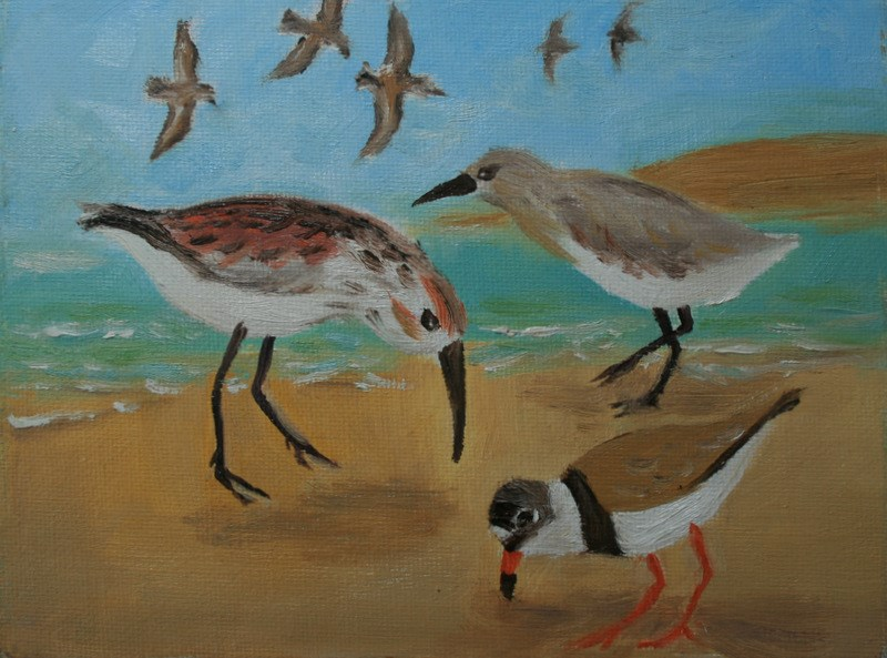 """Sandpipers"" original fine art by Jean Nelson"