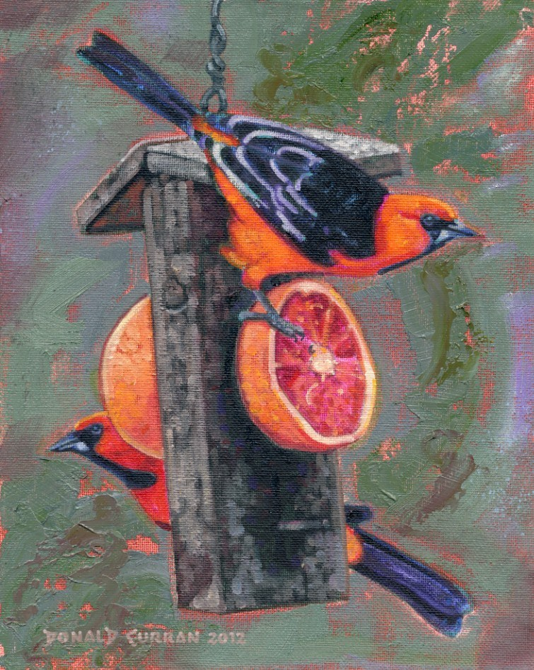 """Hungry Birds"" original fine art by Donald Curran"