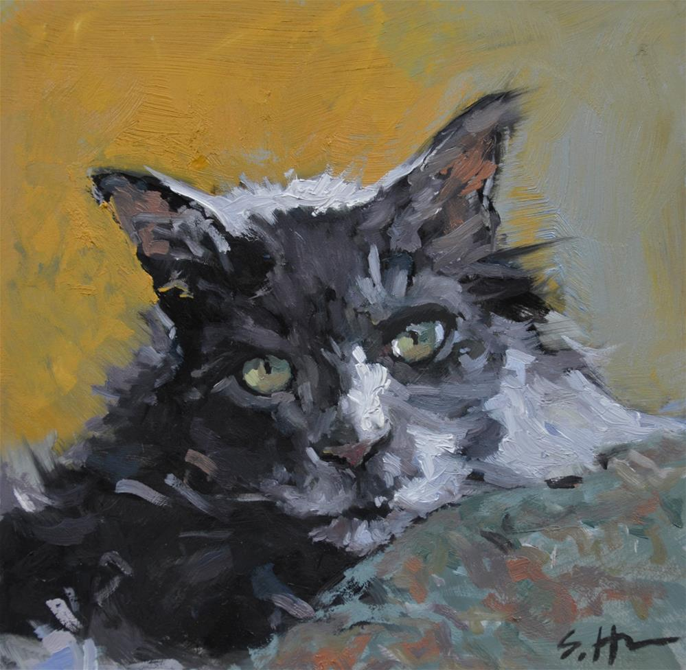 """Gilly Cat"" original fine art by Susan Hughes"