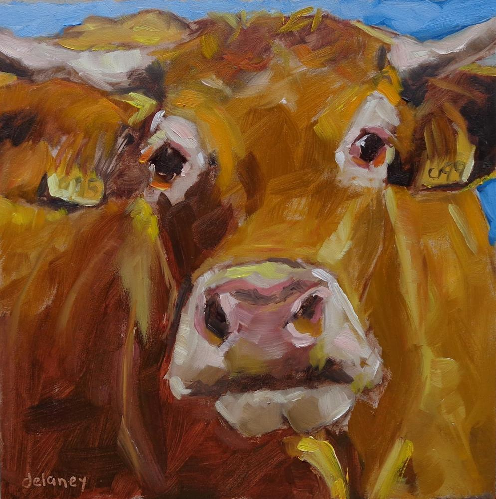 """Cow 139 HOLY COW"" original fine art by Jean Delaney"