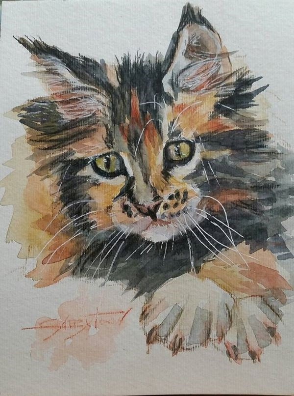 """Sad Kitty"" original fine art by Gabriella DeLamater"