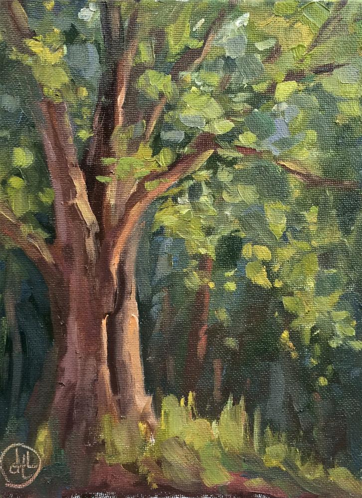 """oak in late light"" original fine art by Dottie  T  Leatherwood"