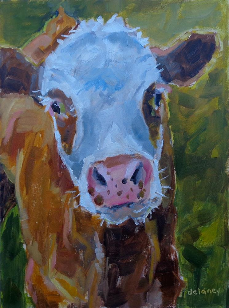 """Cow 145 DUCKY FUZZY HEAD"" original fine art by Jean Delaney"