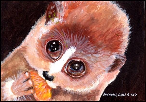 """""""Slow Lemur"""" original fine art by Patricia Ann Rizzo"""