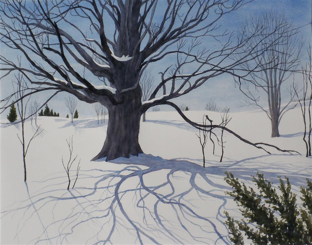"""Maple near Sugarloaf"" original fine art by Greg Arens"