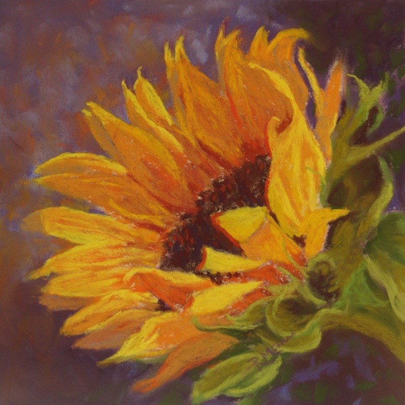"""Sunflower west"" original fine art by Ruth Mann"