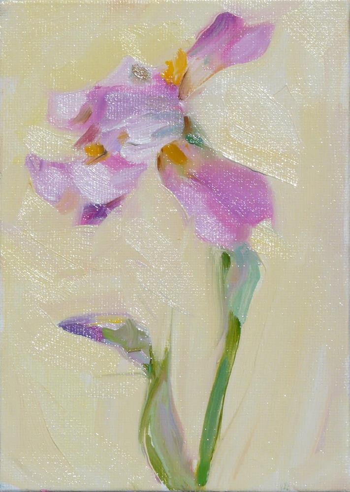 """Single Iris,still l ife,oil on canvas,7x5,$175"" original fine art by Joy Olney"