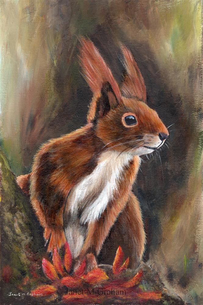 """""""Squirrel"""" original fine art by Janet Graham"""