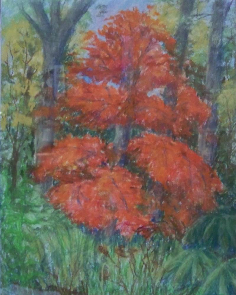 """""""Autumn Red"""" original fine art by Elaine Shortall"""