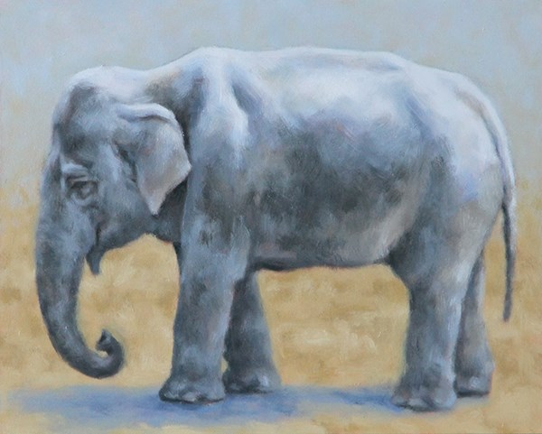 """Elephant"" original fine art by Sarah Becktel"