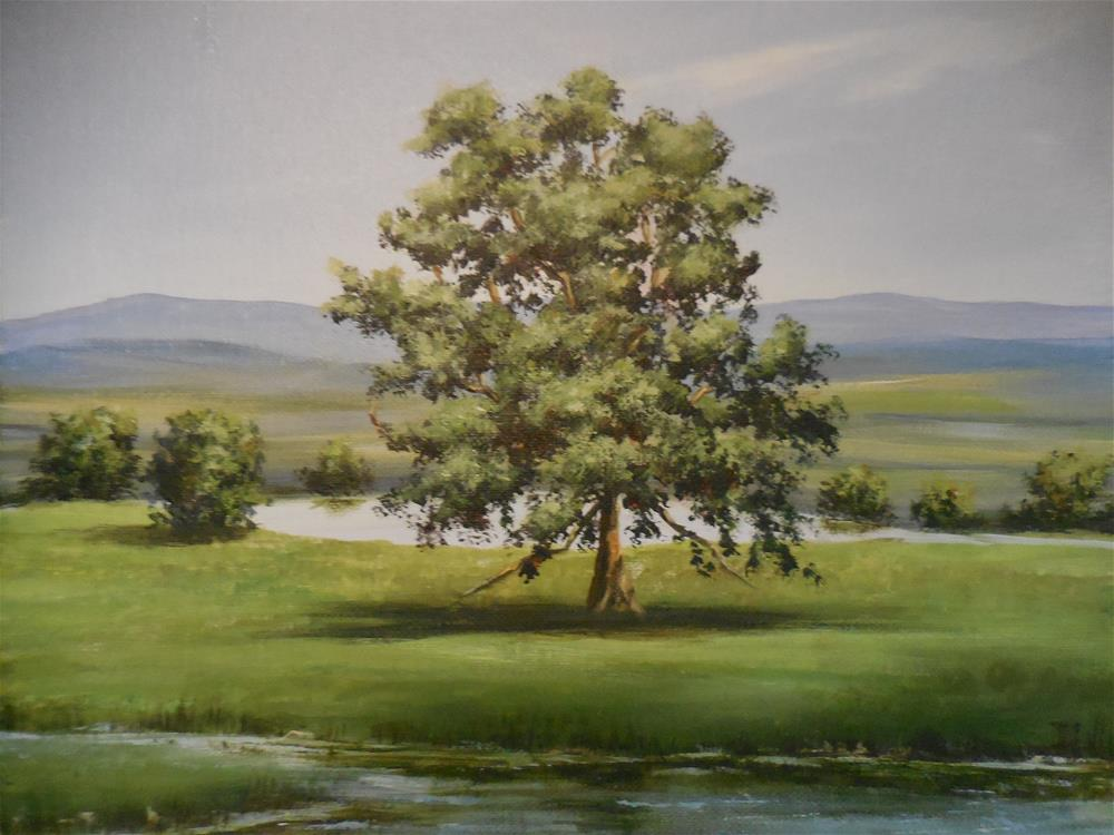"""The Lone Oak"" original fine art by Terri Nicholson"