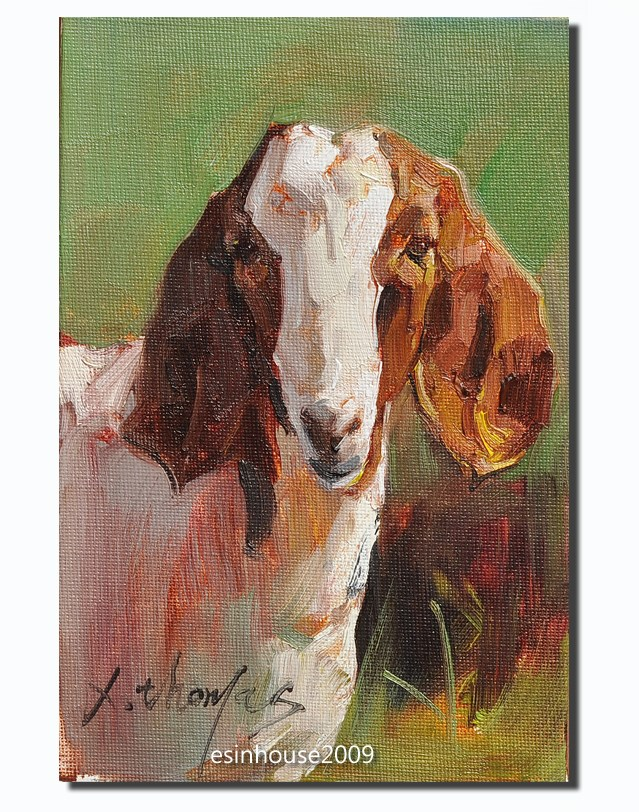 """goat"" original fine art by Thomas Xie"