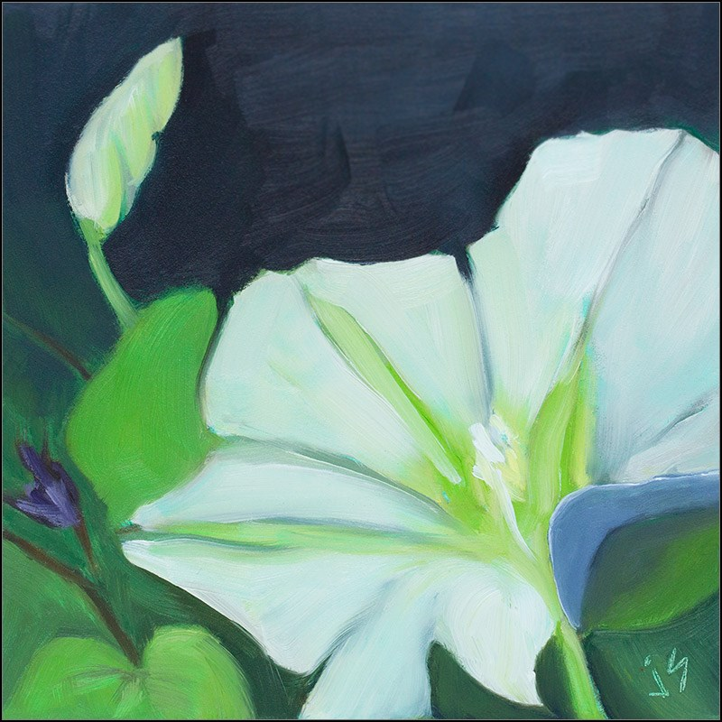 """Moonflower Madness"" original fine art by Johnna Schelling"