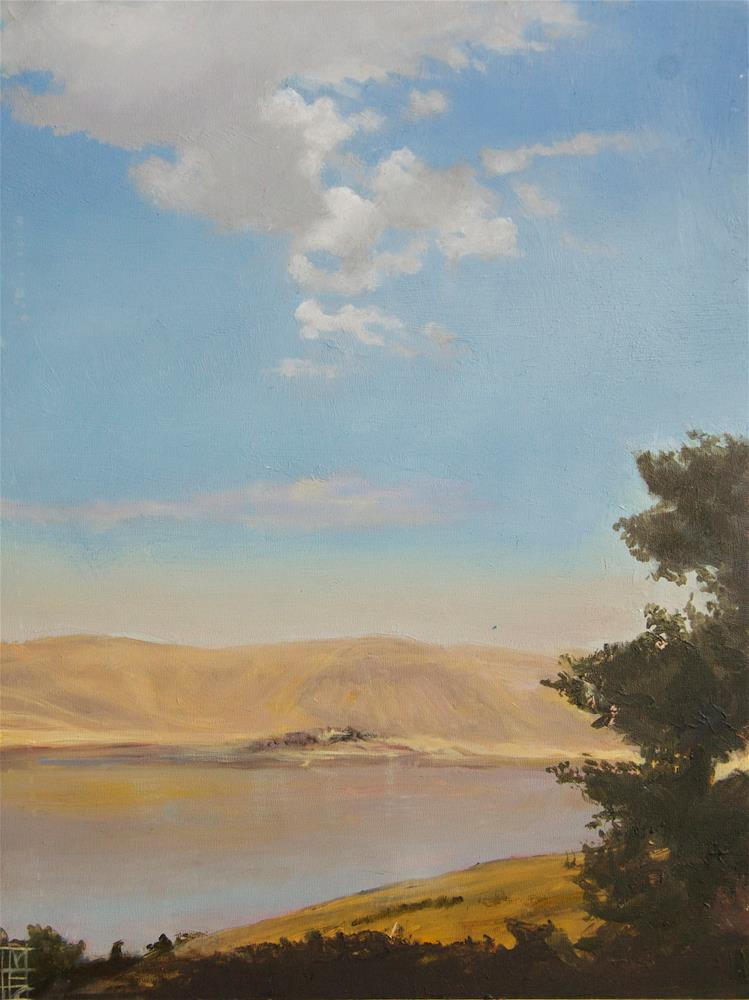 """Columbia River Plateau"" original fine art by Margot Cole"